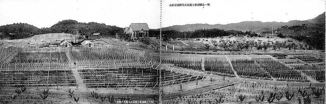 「杉山農園 福岡」の画像検索結果